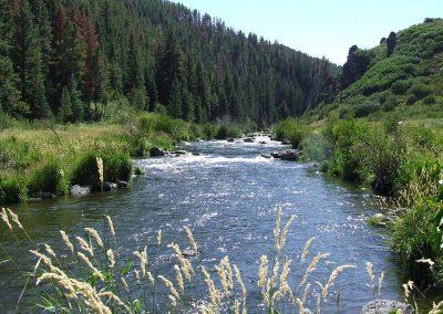Large creek meandering through canyon.